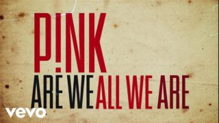 Pink - Are We All We Are